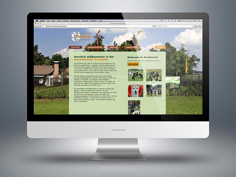 webdesign hondenschool